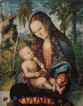 Madonna under the fir tree, c.1510