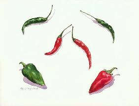 Chillies and Peppers, 2005 (w/c on paper)