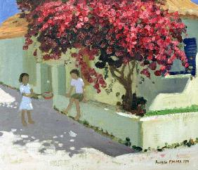 Bouganvillaea, Zante, 1999 (oil on canvas)
