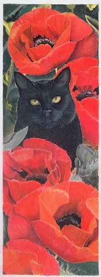 Black Cat with Poppies (pastel on paper)