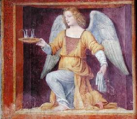 Luini, Bernardino : An Angel