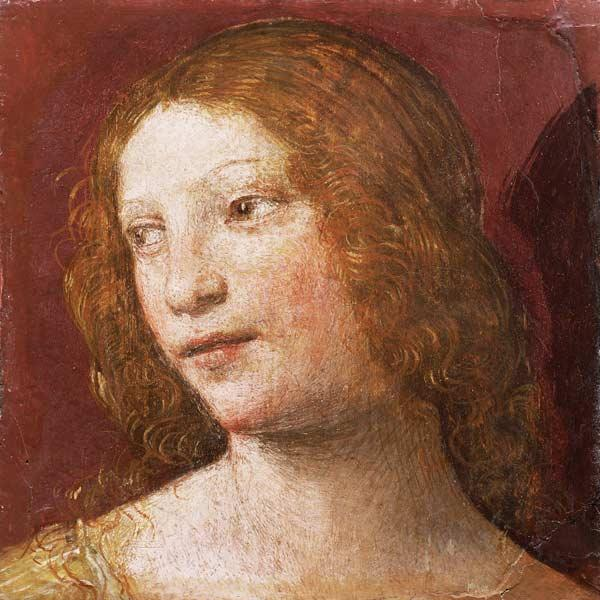 Luini, Bernardino : Head of a Young Woman