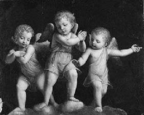 Luini, Bernardino : Three Cherubs - Black and ...