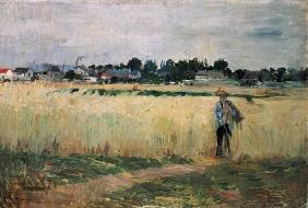 In the Wheatfield at Gennevilliers