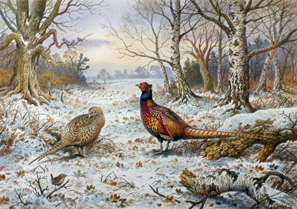 Pair of Pheasants with a Wren