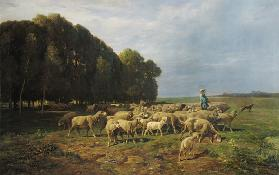 Flock of Sheep in a Landscape
