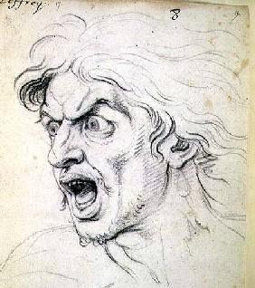 The head of a man screaming in terror, a study for the figure of Darius in 'The Battle of Arbela'
