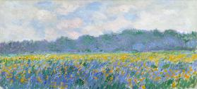 Field of Yellow Irises at Giverny