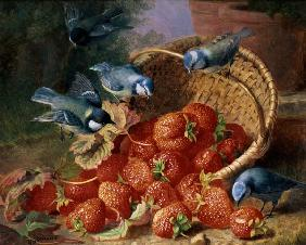 Still Life with Strawberries and Bluetits