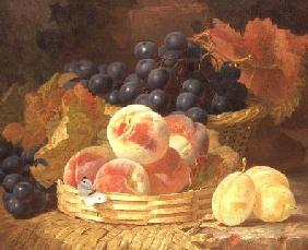 Still Life with Fruit and a Butterfly