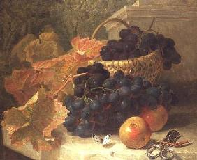 Still Life with Grapes and Scissors on a Stone Shelf