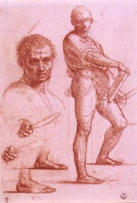 Bartolommeo, Fra : Study of a male holding a ...