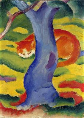 Marc, Franz : Cat Behind a Tree