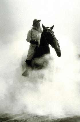 Soldier and Horse wearing a gas mask during the Battle of Verdun