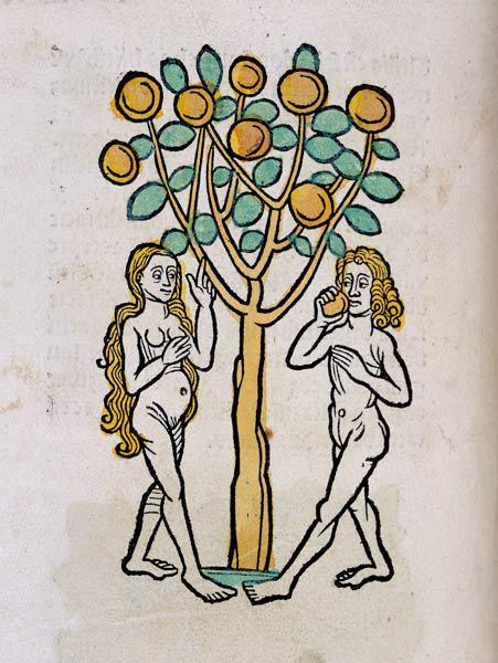 The Tree of Knowledge, from Ortus Sanitatis'