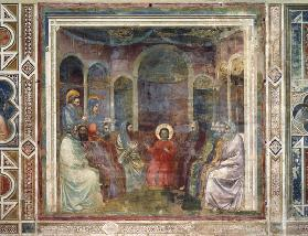 12-year-old Jesus in temple / Giotto
