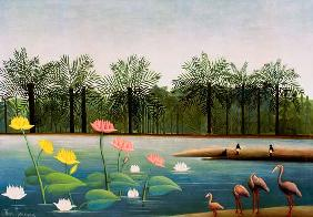 Rousseau, Henri Julien-F�lix : H.Rousseau, The Flamingoes