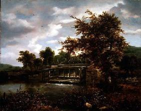 A wooded river landscape with a sluice gate