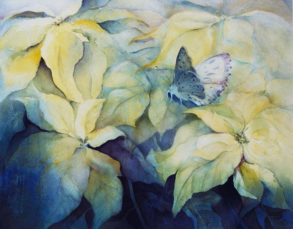Cream Poinsettia with butterfly