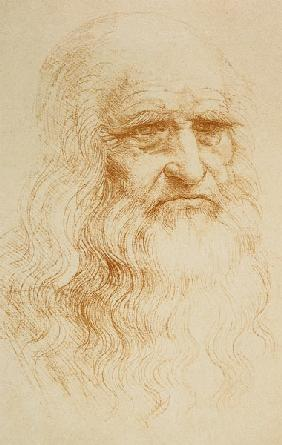 Portrait of a Bearded Man, possibly a Self Portrait