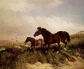 Ludwig Fay - Mare with foals