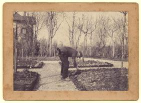 Gustave Caillebotte (1848-94) gardening at Petit Gennevilliers, February 1892 (b/w photo)