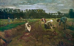 potato harvest in Barbizon 1874/75