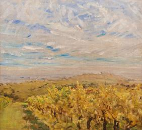 Slevogt, Max : Early Autumn in the Palati...