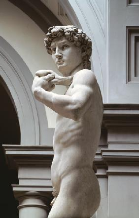 (Buonarroti), Michelangelo : David, detail of upper sec...