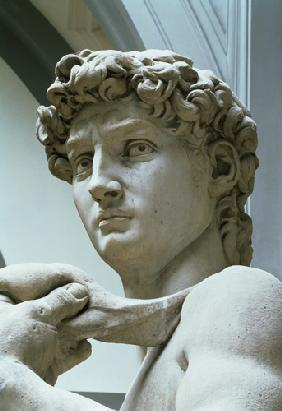 (Buonarroti), Michelangelo : David, detail of the head ...