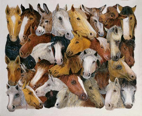Horses Horses (oil on canvas)