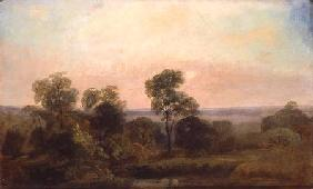 Wooded Landscape at Dusk
