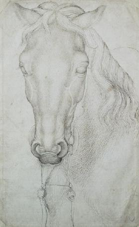 Head of a Horse (pen & ink...