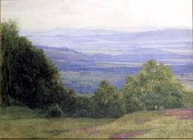 From Kings Ley Green near Haslemere