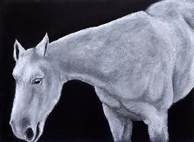 Ghost (pastel on paper)