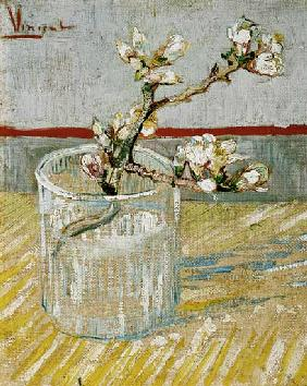 Blossoming Almond Branch in a Glass 1888