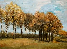 v.Gogh / Autumn landscape / Nov. 1885