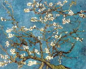 Almond Blossoms (copy) 1890