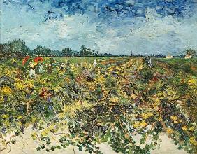 van Gogh, Vincent : The vineyard