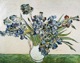 van Gogh, Vincent : Vase of Irises