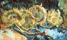 Four Withered Sunflowers 1887