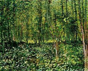Woods and Undergrowth 1887
