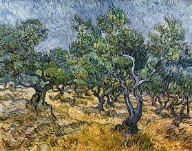 The Olive Grove 1889