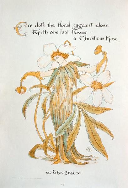 Crane, Walter : Christmas Rose