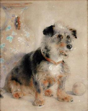 Terrier seated before a Canton Famille Rose Vase