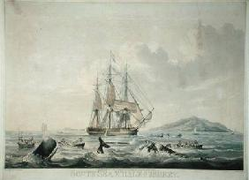 South Sea Whale Fishery, engraved by T. Sutherland